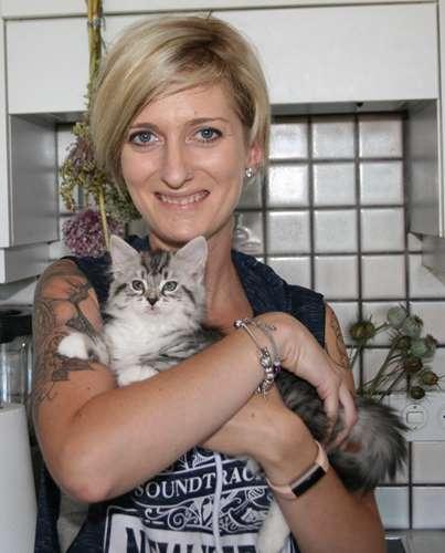 chat a jeun avant stérilisation